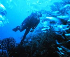 Scuba diver: Image courtesy of U.S. National Oceanic and Atmospheric Administration